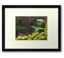 Bushes , Bridge and River Framed Print