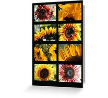Sunflower Collage 2 Greeting Card