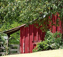 Historic Red Barn by Glenna Walker