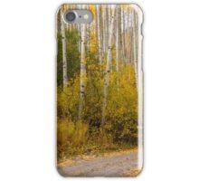 Fall drive in Colorado  iPhone Case/Skin