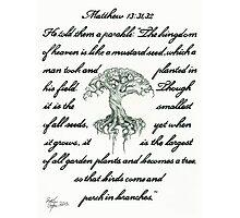 Matthew 13: 31, 32 Mustard Seed Photographic Print