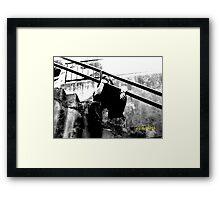 Cole Howard Framed Print