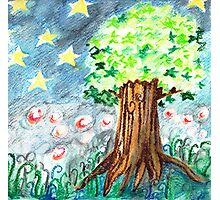 Starlight and Star Tree Photographic Print