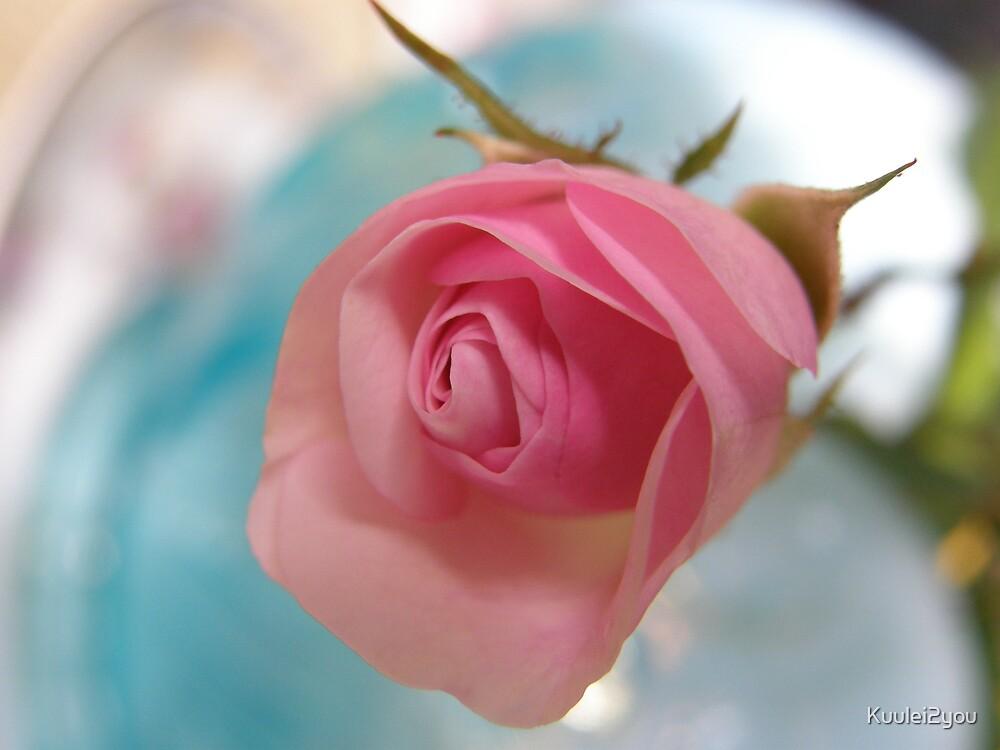 Venton Rose by Kuulei2you