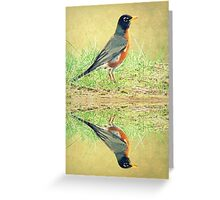 American Robin At Water's Edge Greeting Card