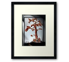 Old Pine Tree Framed Print
