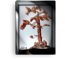 Old Pine Tree Canvas Print
