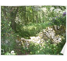 wooded scene Poster