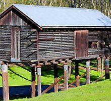 Fry's Produce Barn - Paterson NSW by Bev Woodman