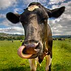 Cow Lick by Richard Gregory