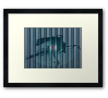 ~tempered by the woman without~ Framed Print