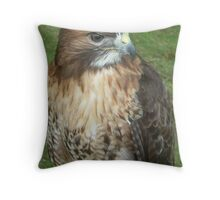 Caerphilly's Falcons Throw Pillow