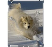 Snowplow iPad Case/Skin