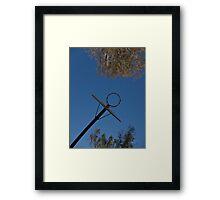 Hoopla Framed Print