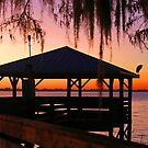 A Florida Sunrise! by jozi1