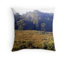 OutBack Throw Pillow