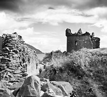 Urquhart Castle by Susan Dailey