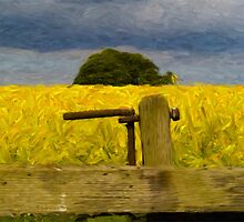 Rapeseed Fields Impressionist 2 by Glen Allen