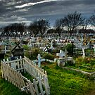 A day at the cemetery by Gonzalo Munoz