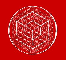 Cubed Flower of life  by John Girvan