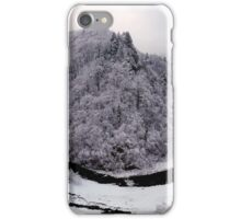 Frosty canyon and river iPhone Case/Skin
