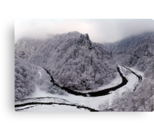 Frosty canyon and river Canvas Print