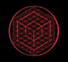 Cubed Flower of Life  by John Girvan