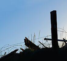 The Last Outpost by Lynda Berlin