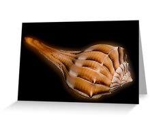 Lightning Whelk Seashell Greeting Card