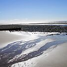 Walney by artgoddess