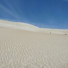 Sandhill, Coffin Bay by Shelley Karutz