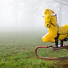 Pony in the Mist by Evan Jones