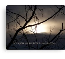 to see.... Canvas Print