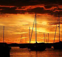 orange by RTuite