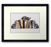 BOOKENDS Framed Print