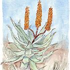 Aloe ferox painting 1 by Maree  Clarkson