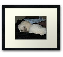 Oh ...thank goodness! Now for a decent sleep! Framed Print
