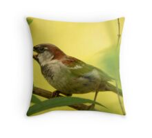 House Sparrow - Beauty in the Commonplace Throw Pillow