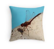 Dragonfly near the pool Throw Pillow