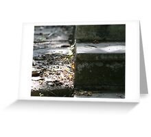 stepping into history Greeting Card