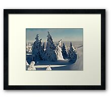 Harsh Beautiful Mysterious Winter Framed Print