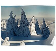 Harsh Beautiful Mysterious Winter Poster