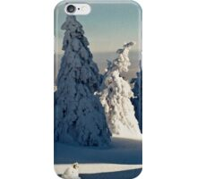 Harsh Beautiful Mysterious Winter iPhone Case/Skin