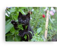 Me iz wild Panther - Me Eatz U! Canvas Print