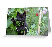 Me iz wild Panther - Me Eatz U! Greeting Card