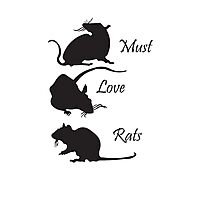 Must. Love. Rats - 3 Rats Down Photographic Print