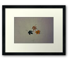 Vintage autumn leaves Framed Print