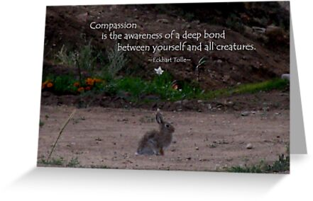 Live With Compassion by Jan Landers