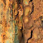 Italian rusty rail by wabisabi54