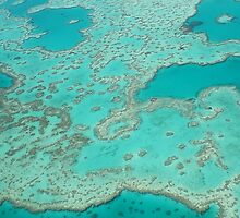 Looking down on the Great barrier reef  by JHFoto